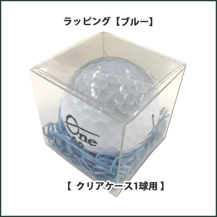 クリアケース【ブルー】