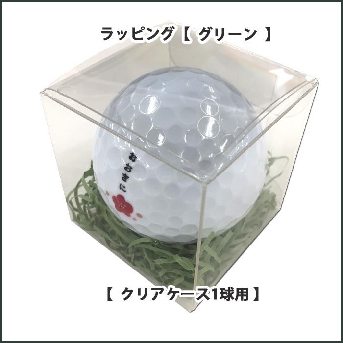 クリアケース【緑】